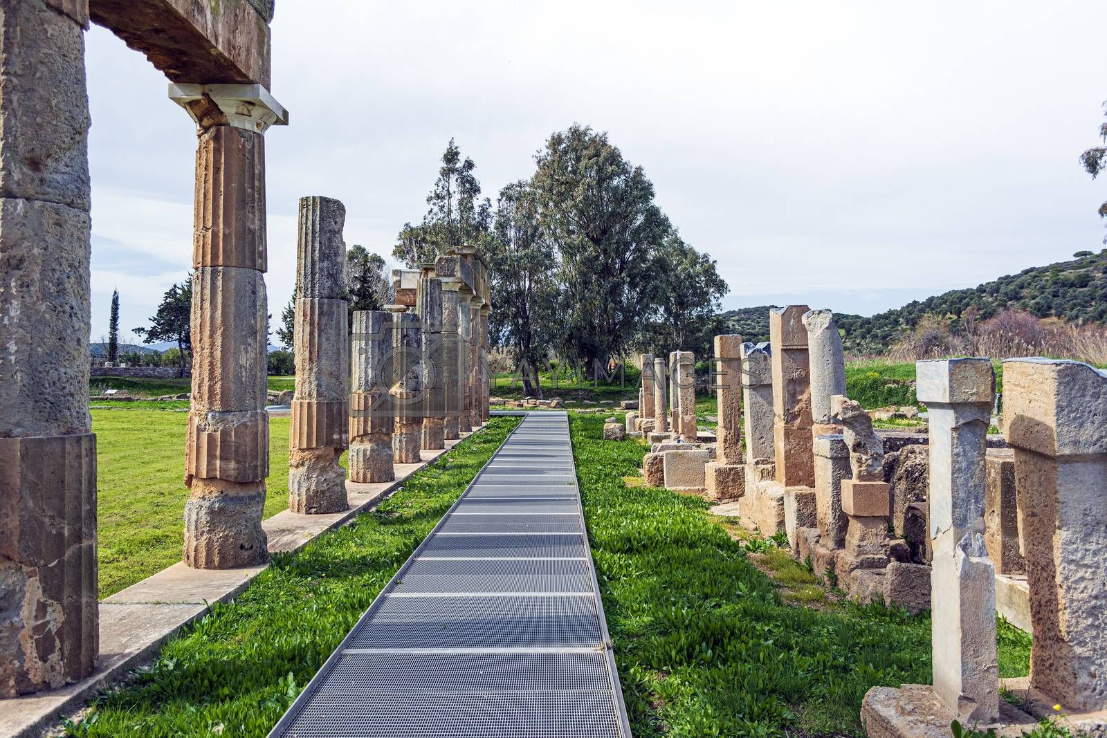 Temple of Artemis in archaeological site of Brauron, Attica, Greece. Afternoon time.