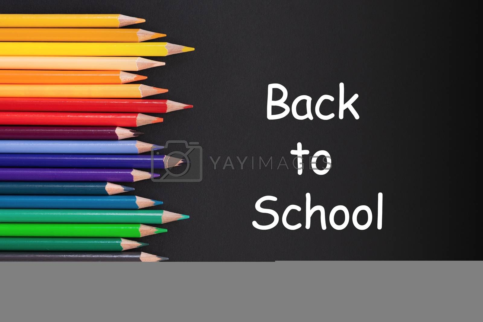 back to school Concept. Close up shot of color pencil pile pencil nibs on black background