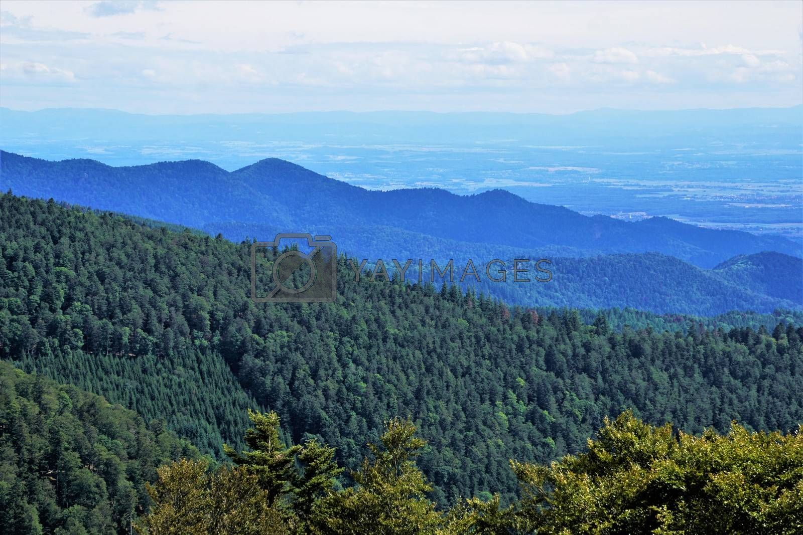 View over the hills of the Vosges to the valley of the Rhine river