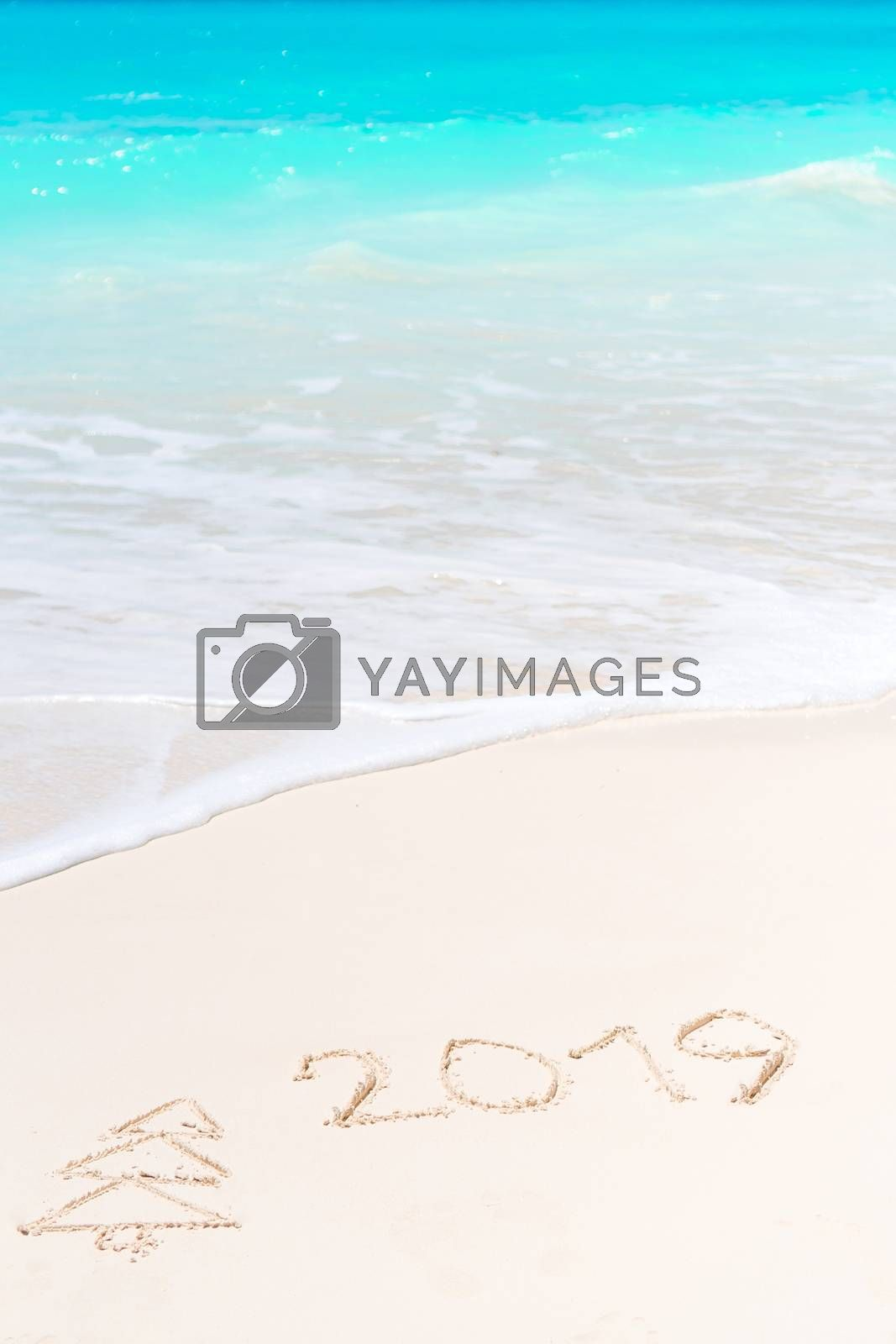 2019 and firtree painting on sandy white beach by travnikovstudio