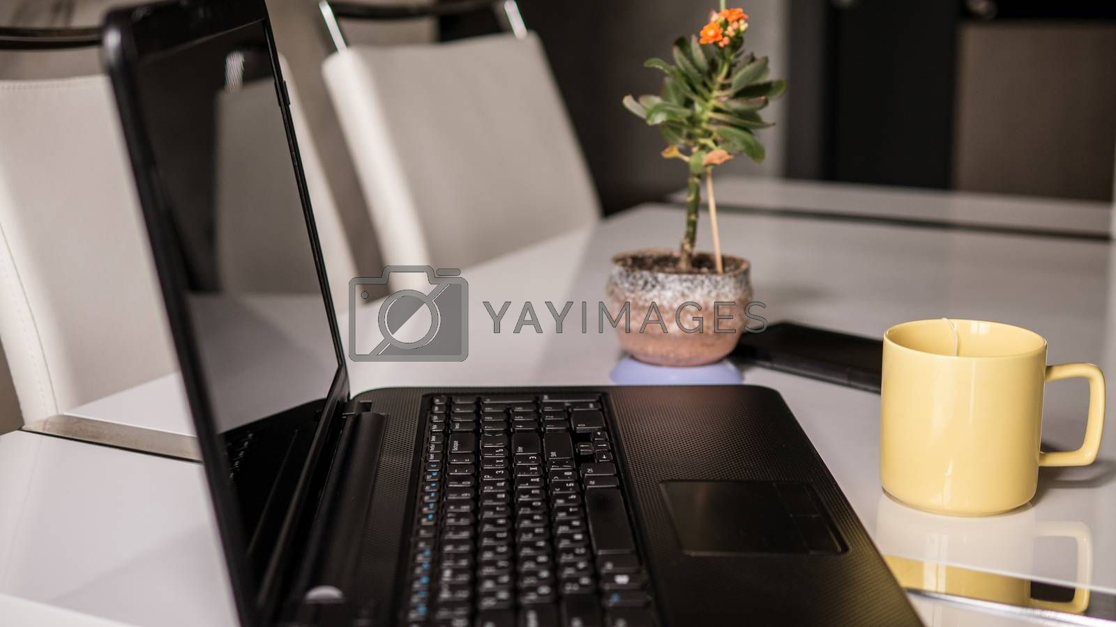 design in the apartment a white table with a laptop and a flowerpot