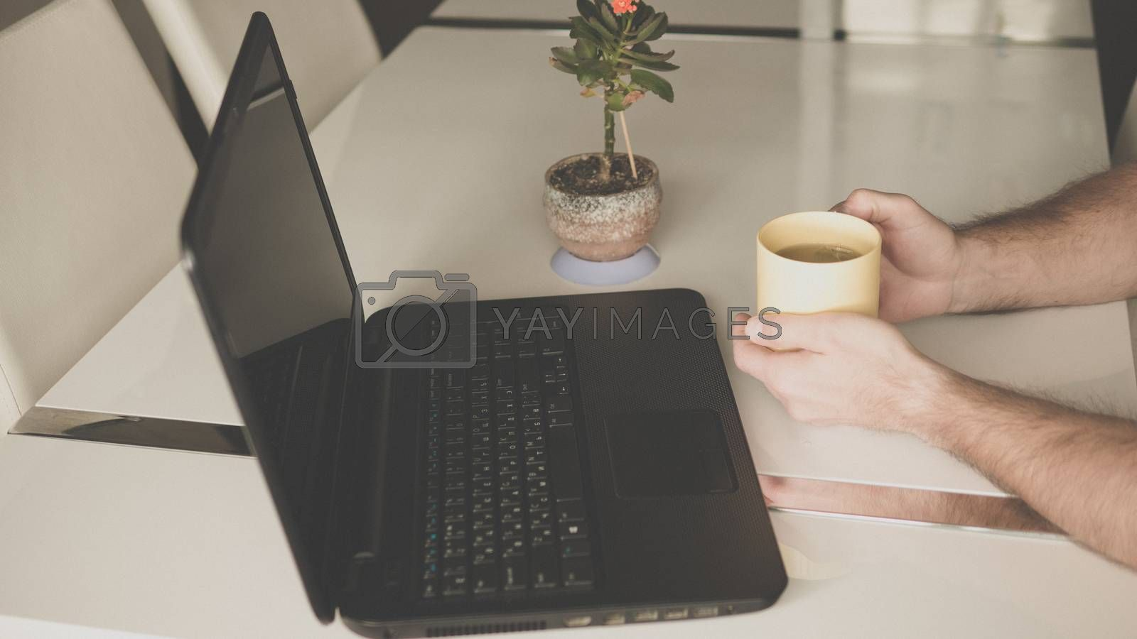 male hands with a cup of tea at the table a flowerpot on the table and a laptop black