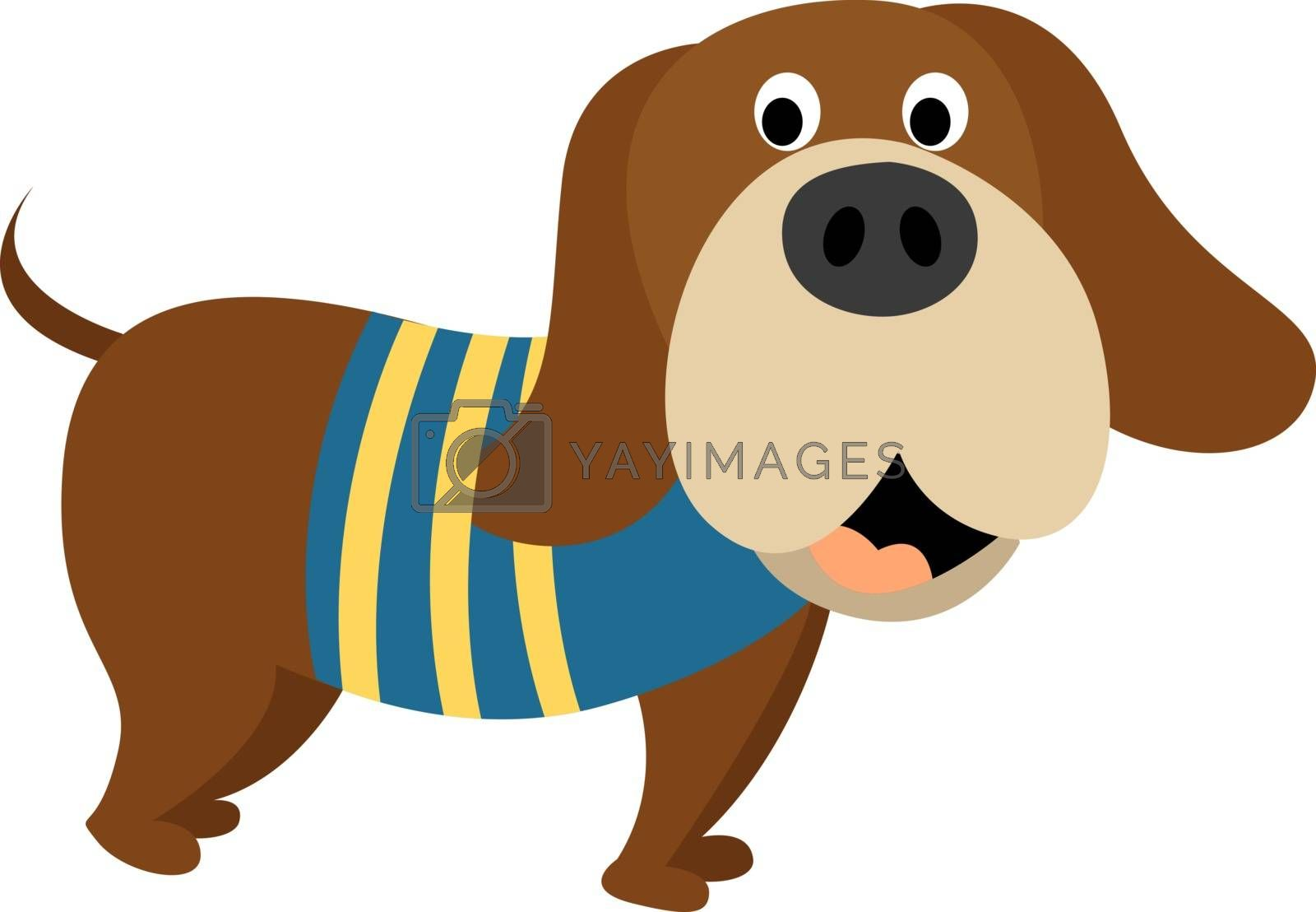 Dog in sweater, illustration, vector on white background.
