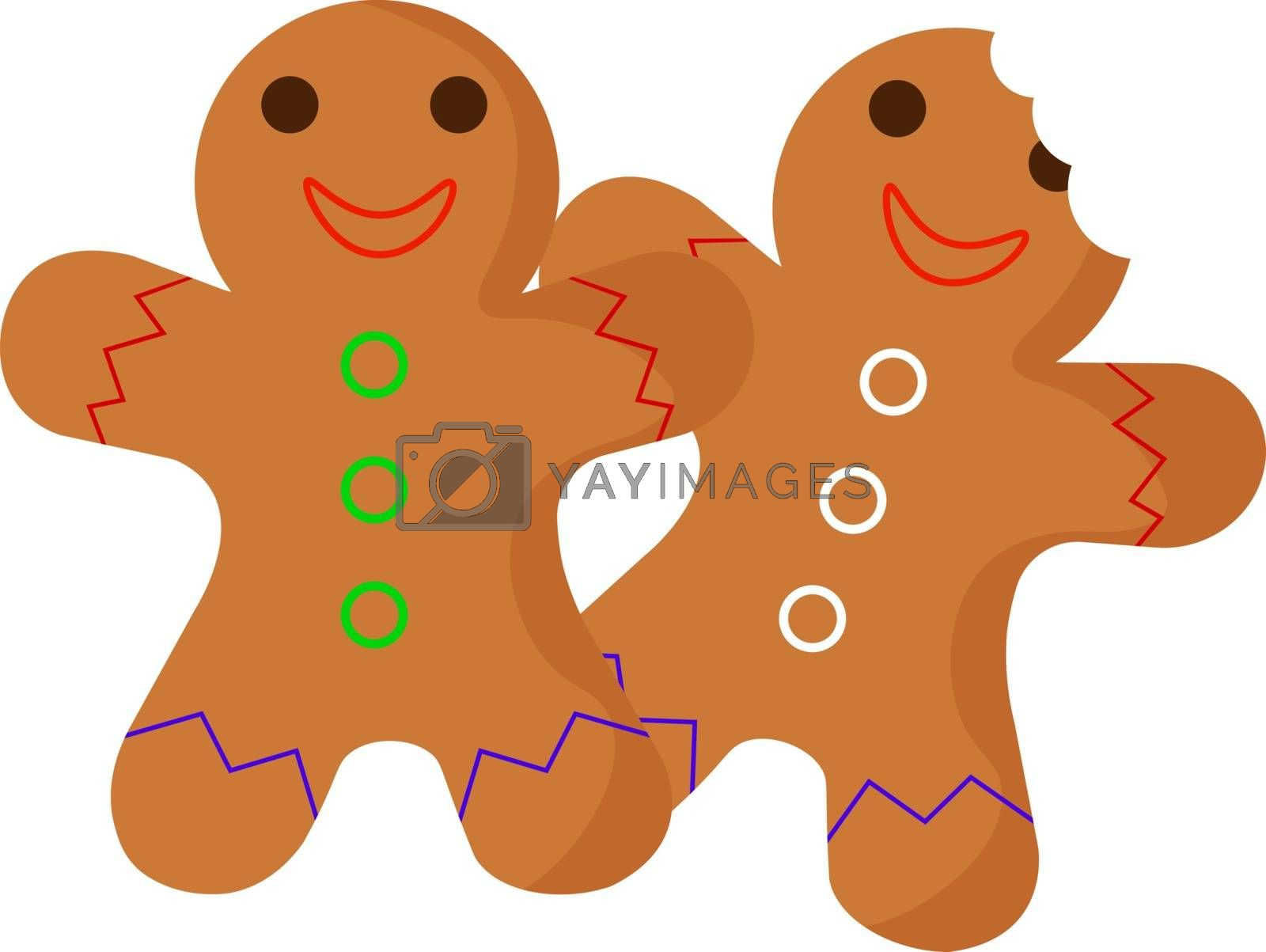 Sugar cookies, illustration, vector on white background.