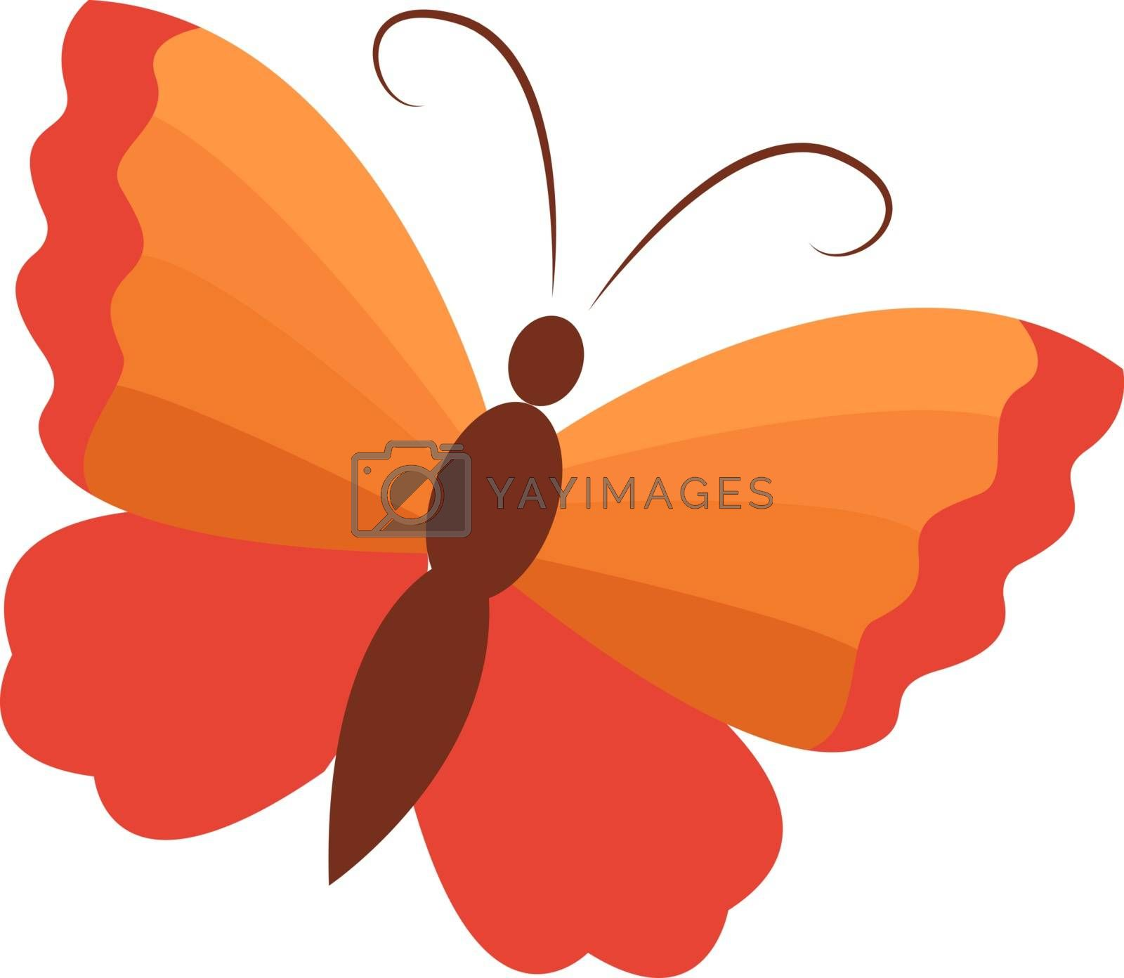 Orange butterfly, illustration, vector on white background.