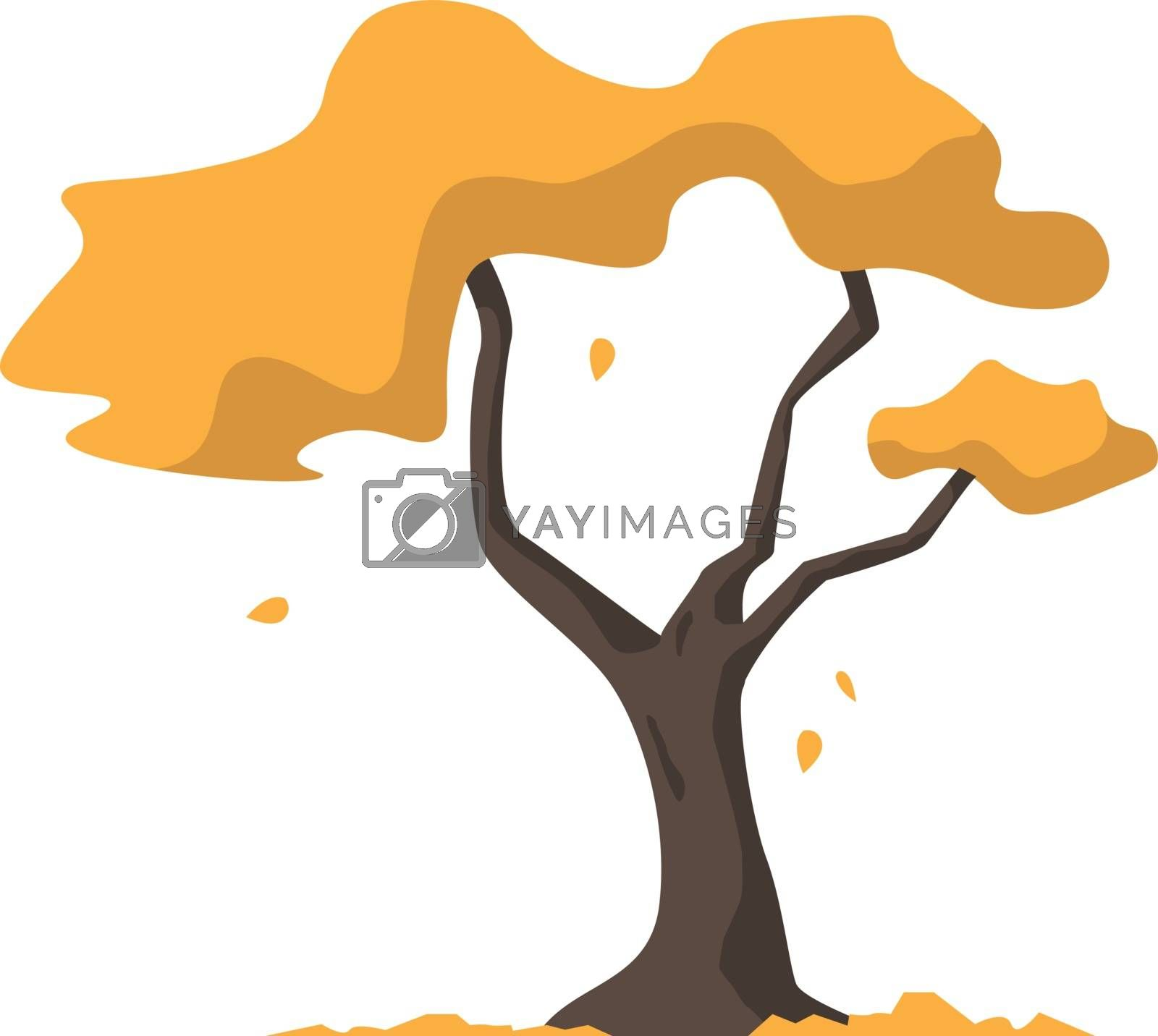 Autumn tree, illustration, vector on white background.