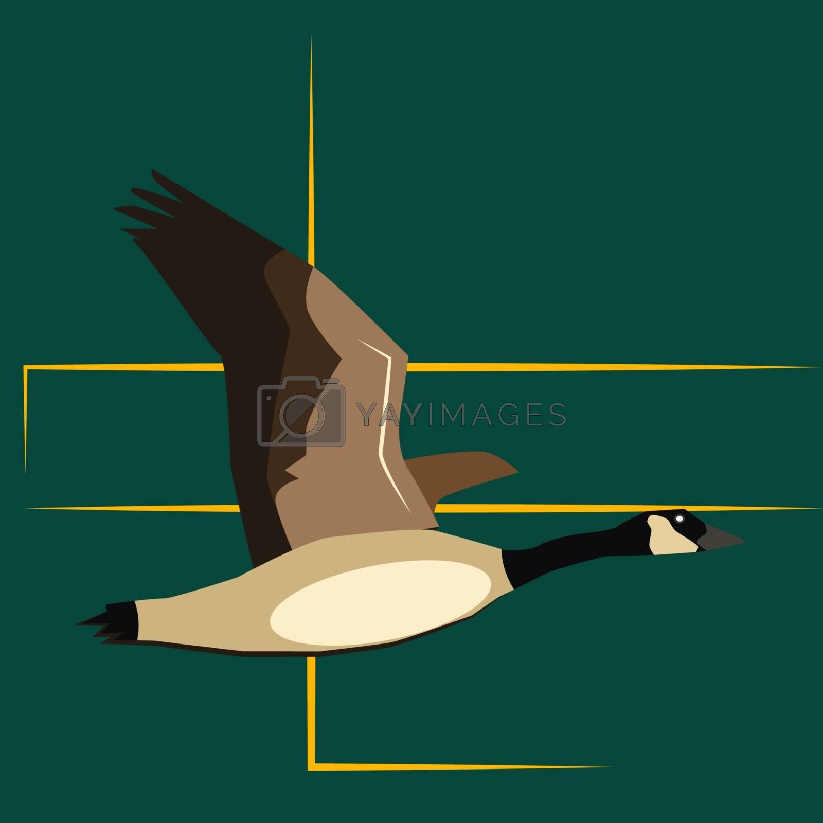 Goose, illustration, vector on white background.