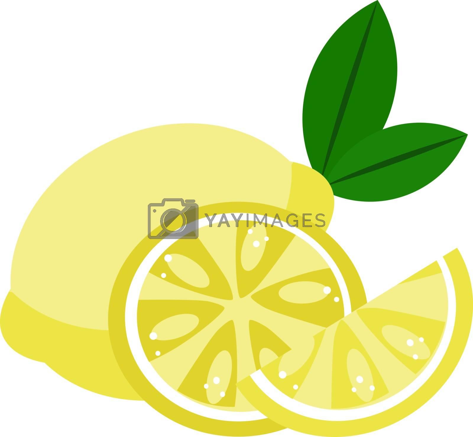 Lemons, illustration, vector on white background.