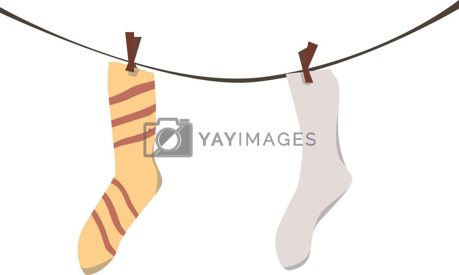 Sock laundry, illustration, vector on white background. by Morphart