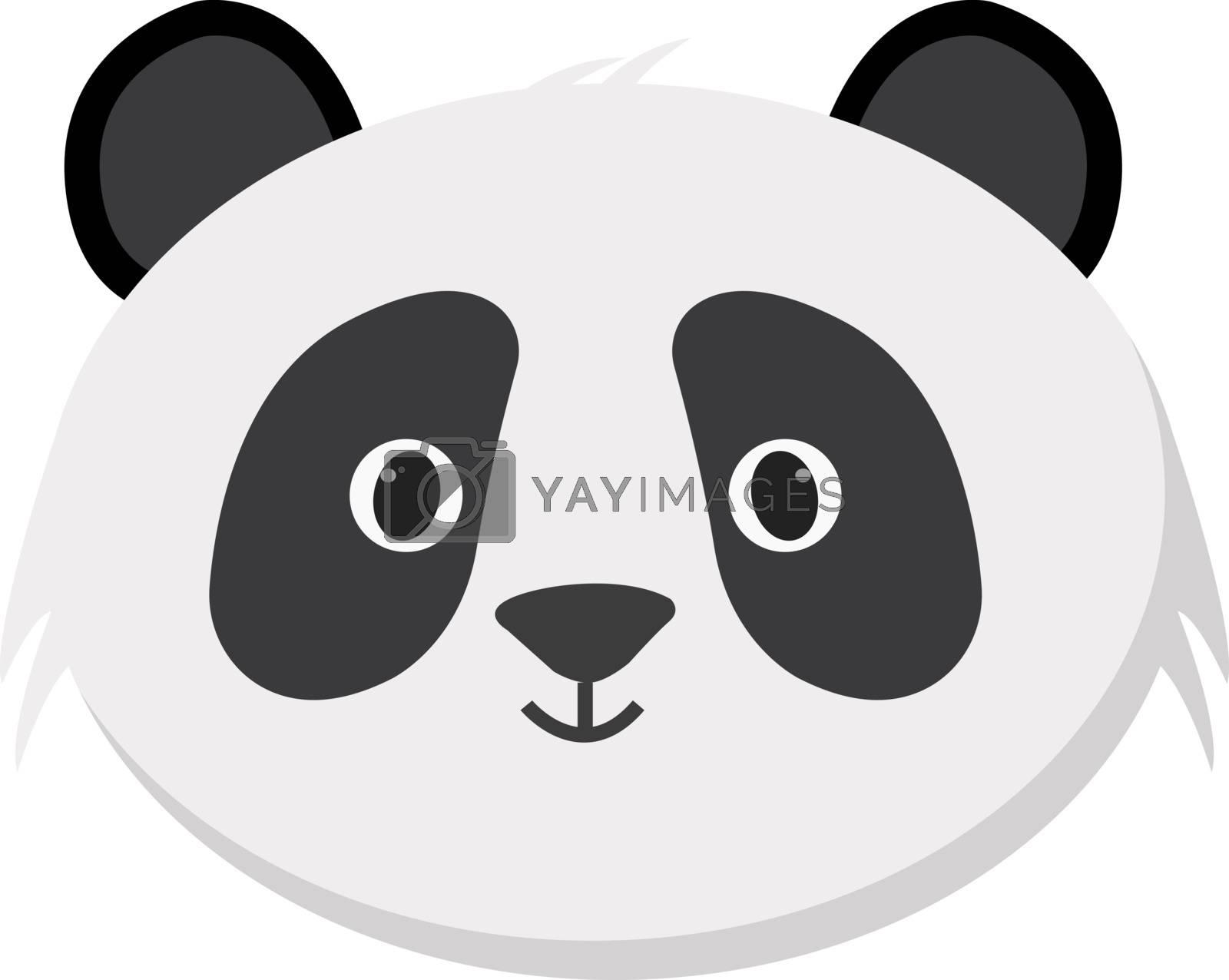 Pandas head, illustration, vector on white background.