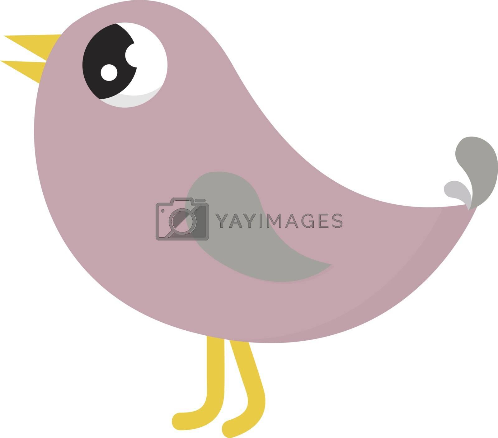 Pink bird, illustration, vector on white background.