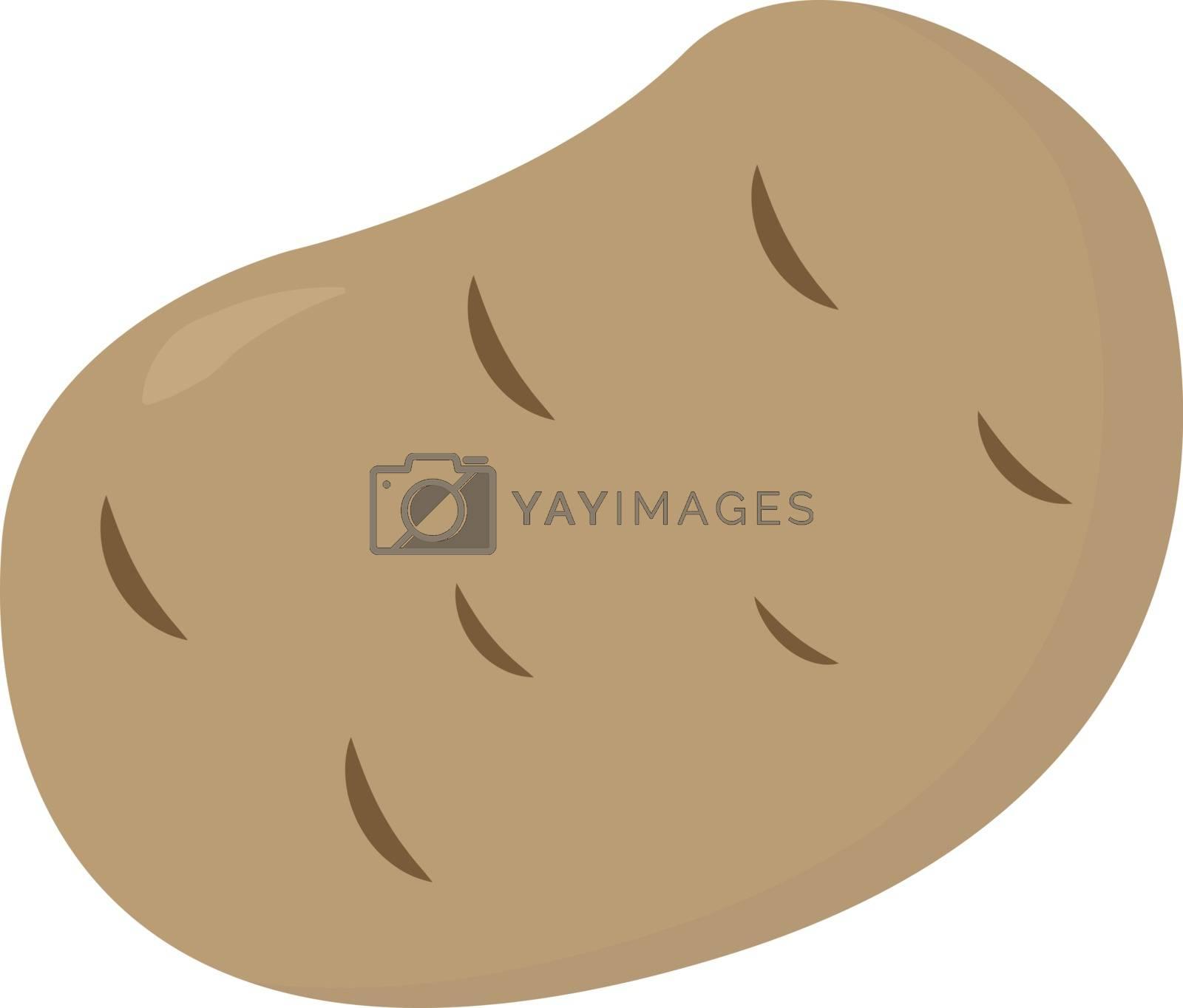 Potato, illustration, vector on white background.