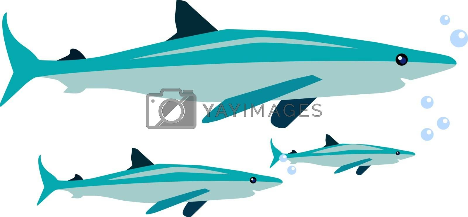 Sharks under sea, illustration, vector on white background.