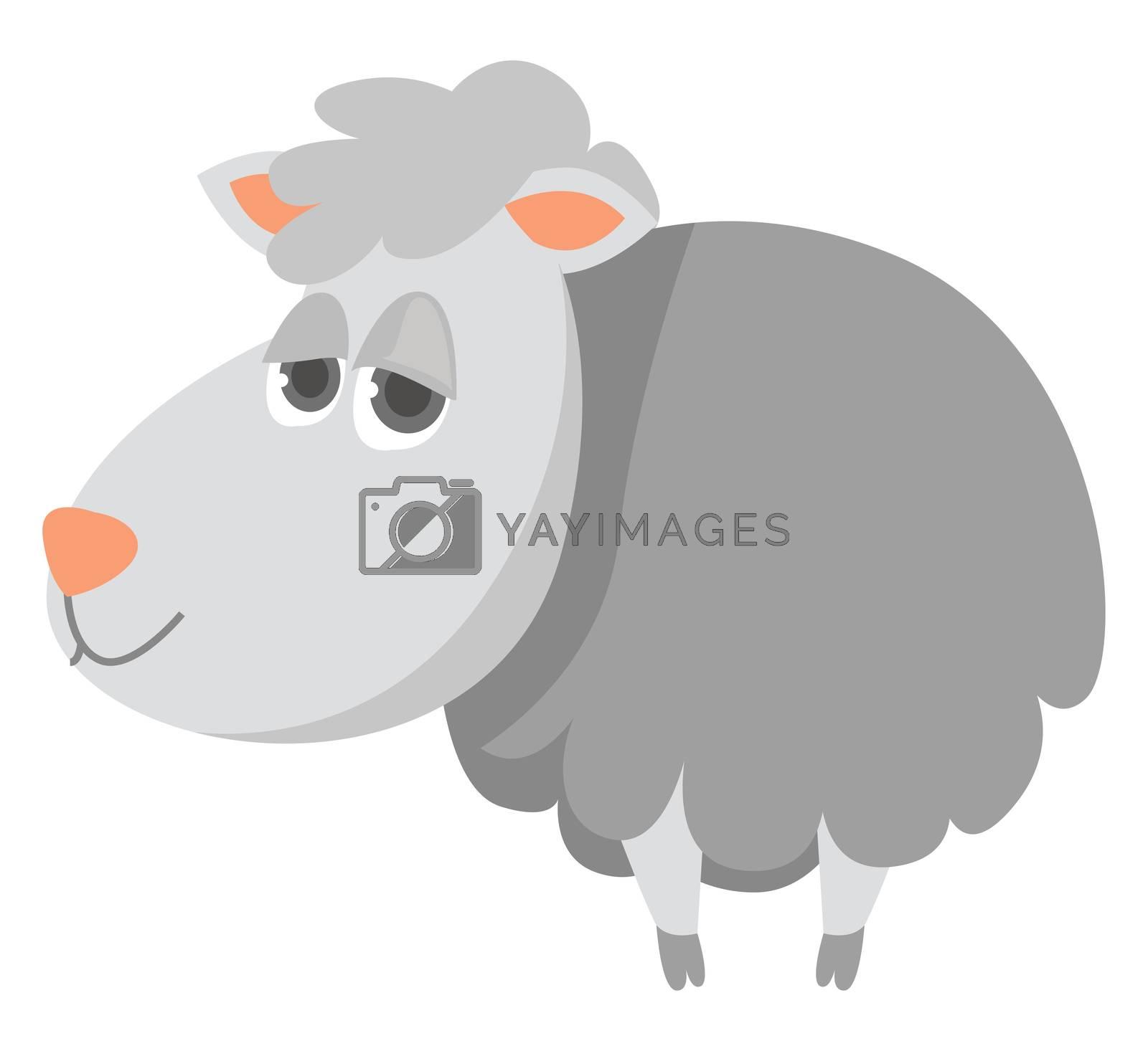 White sheep , illustration, vector on white background by Morphart