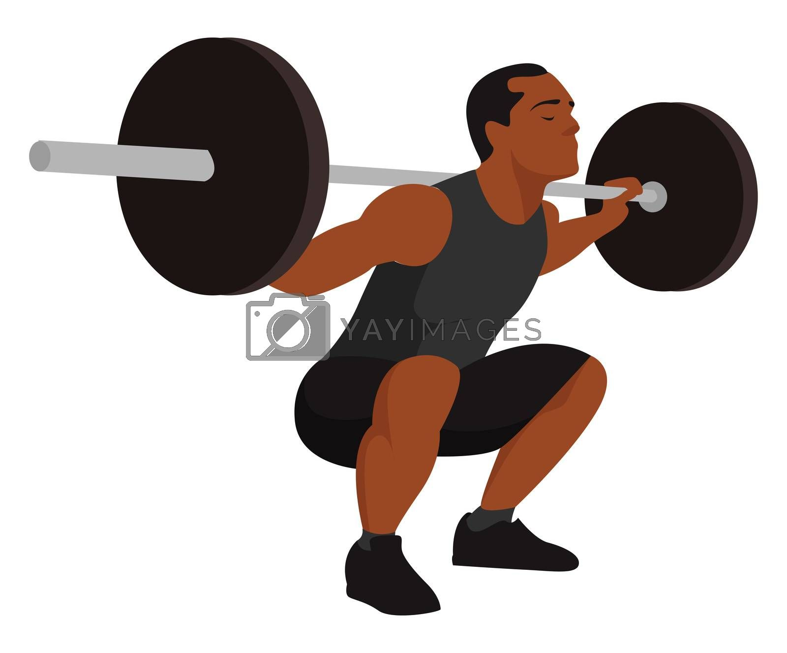Man doing workout with barbell , illustration, vector on white background