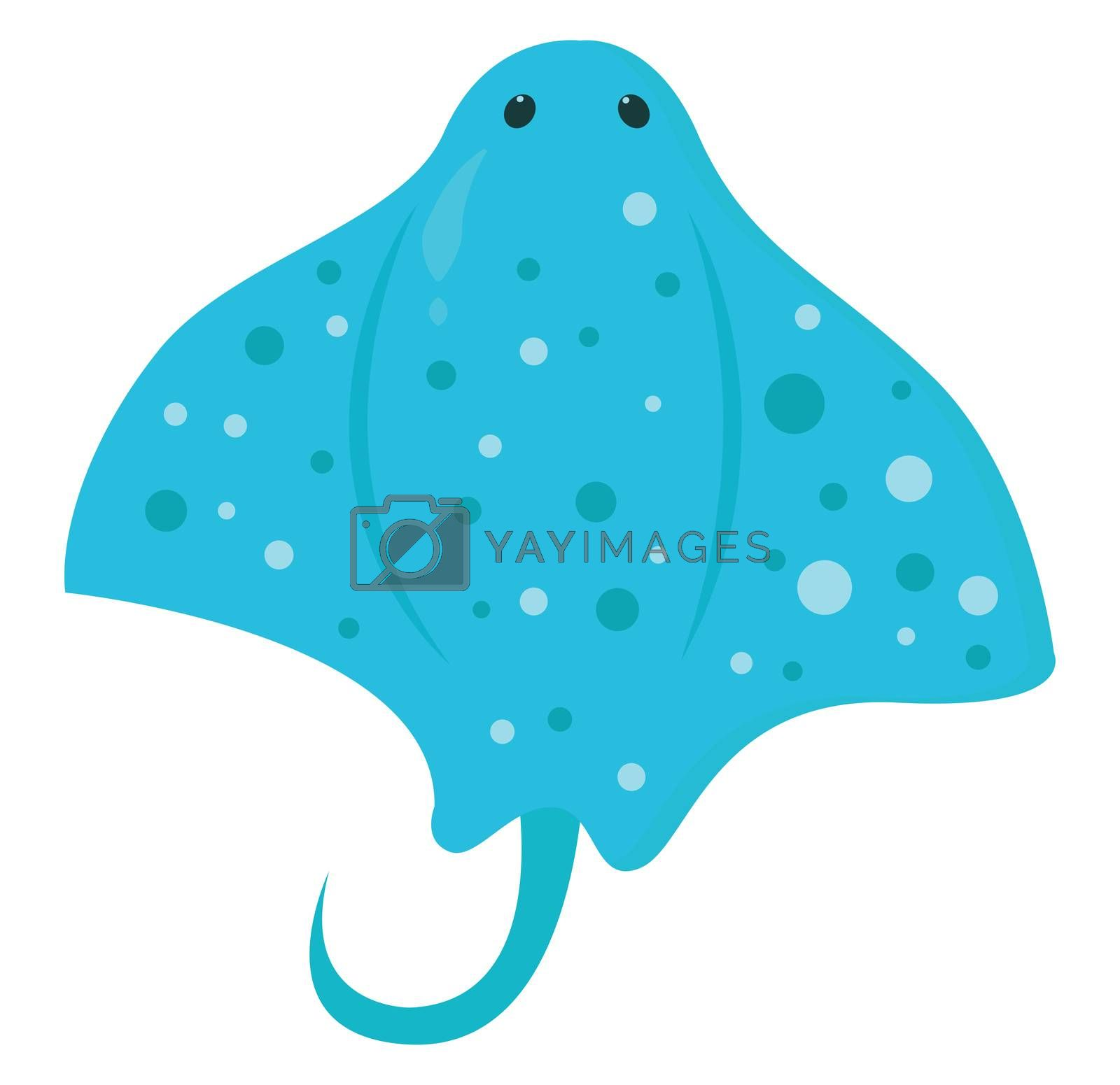 Angelshark , illustration, vector on white background by Morphart