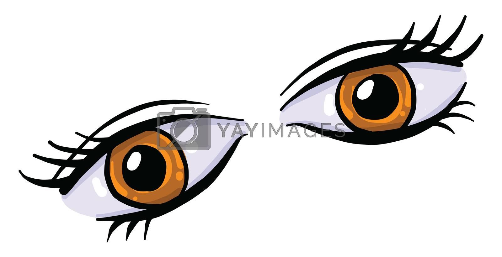 Brown eyes , illustration, vector on white background by Morphart