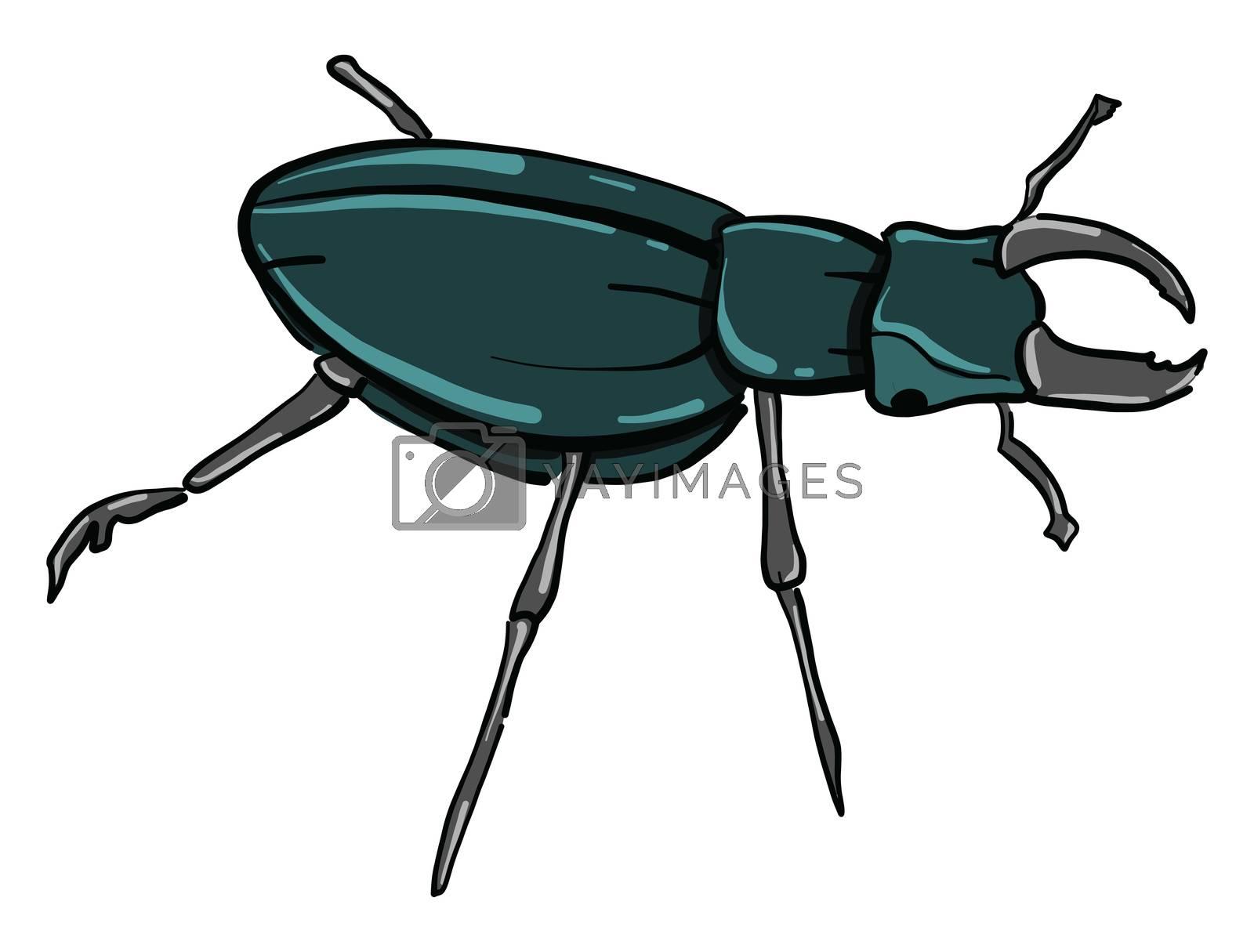 Rhinoceros beetle , illustration, vector on white background
