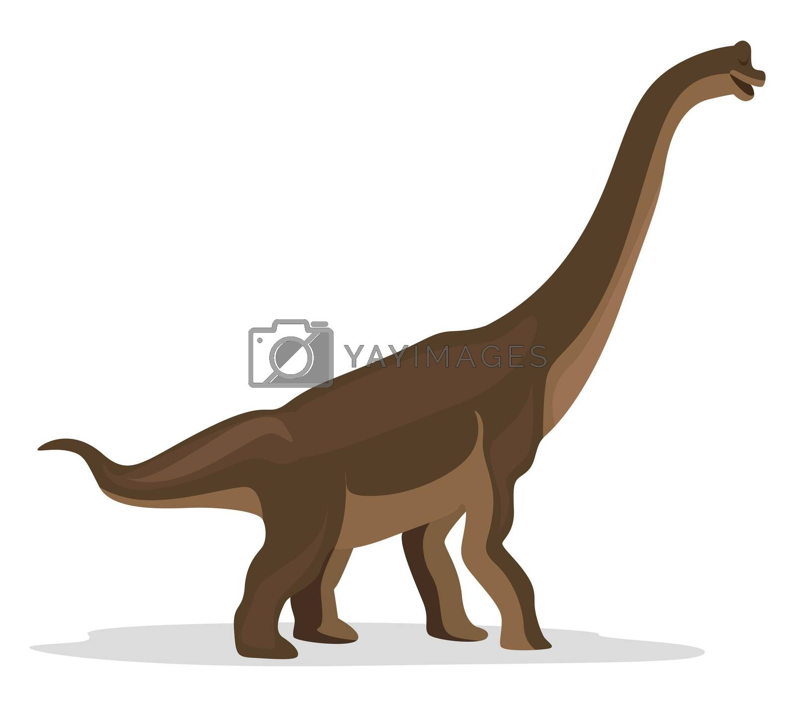 Brachiosaurus , illustration, vector on white background