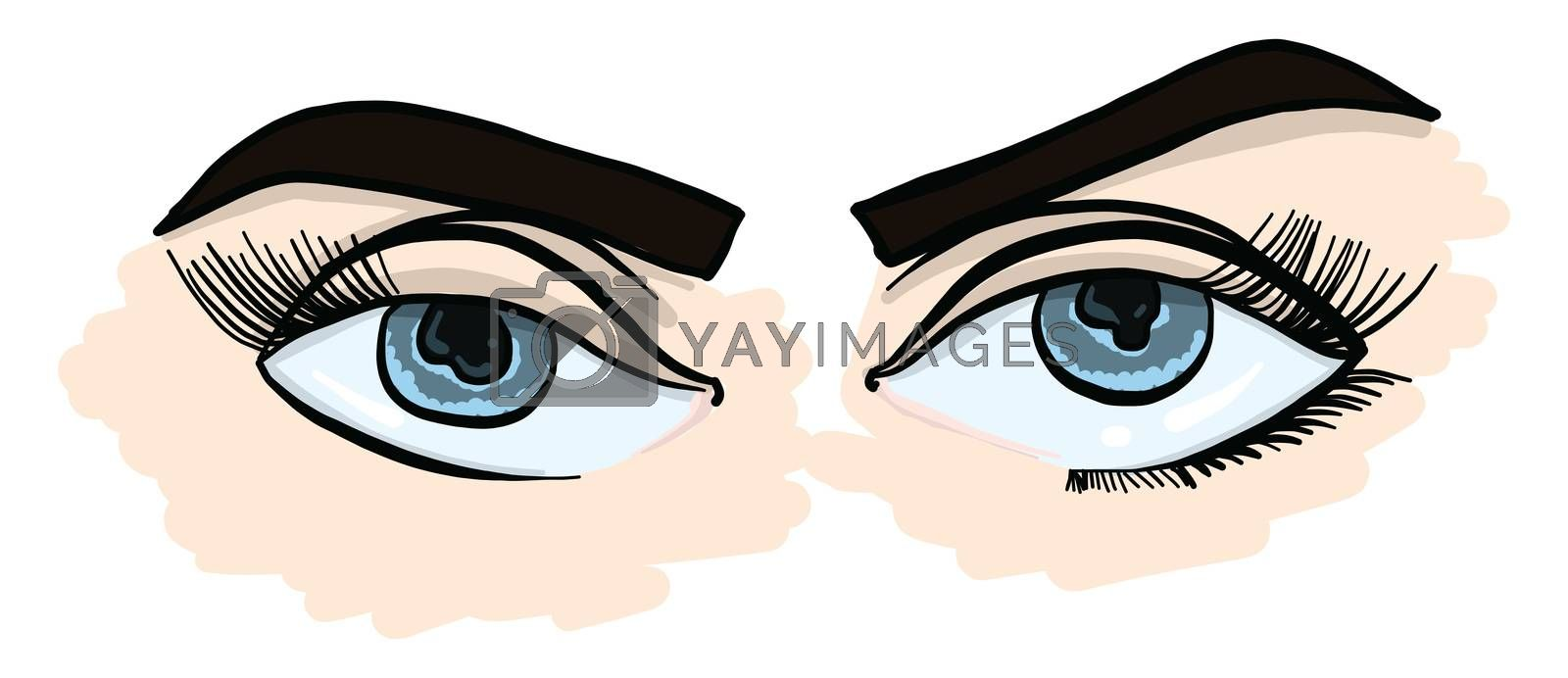 Girl with blue eyes , illustration, vector on white background
