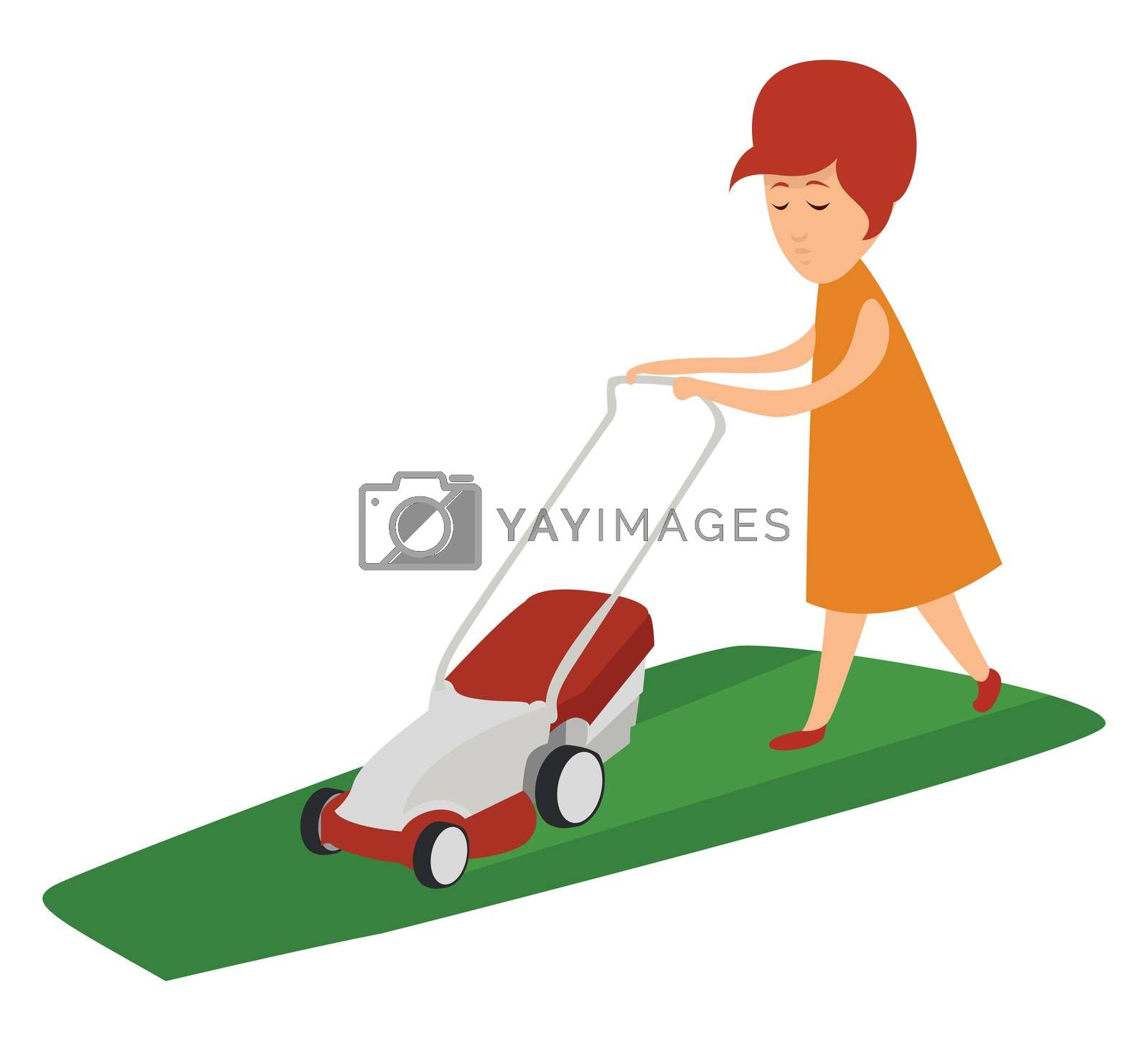 Girl cutting the lawn , illustration, vector on white background