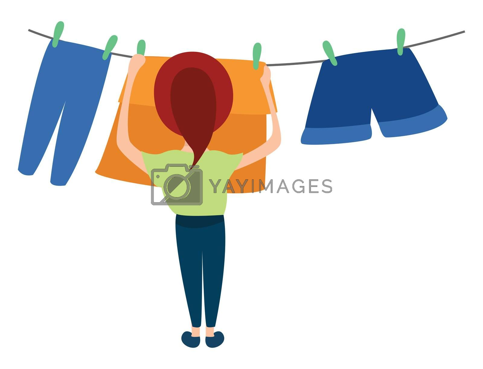 Woman drying clothes , illustration, vector on white background by Morphart