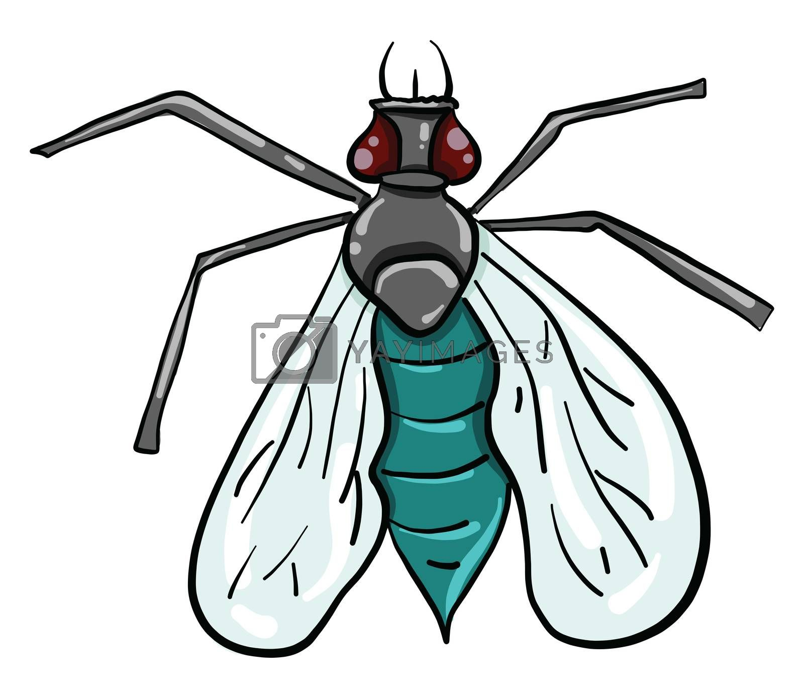 Fly insect , illustration, vector on white background by Morphart