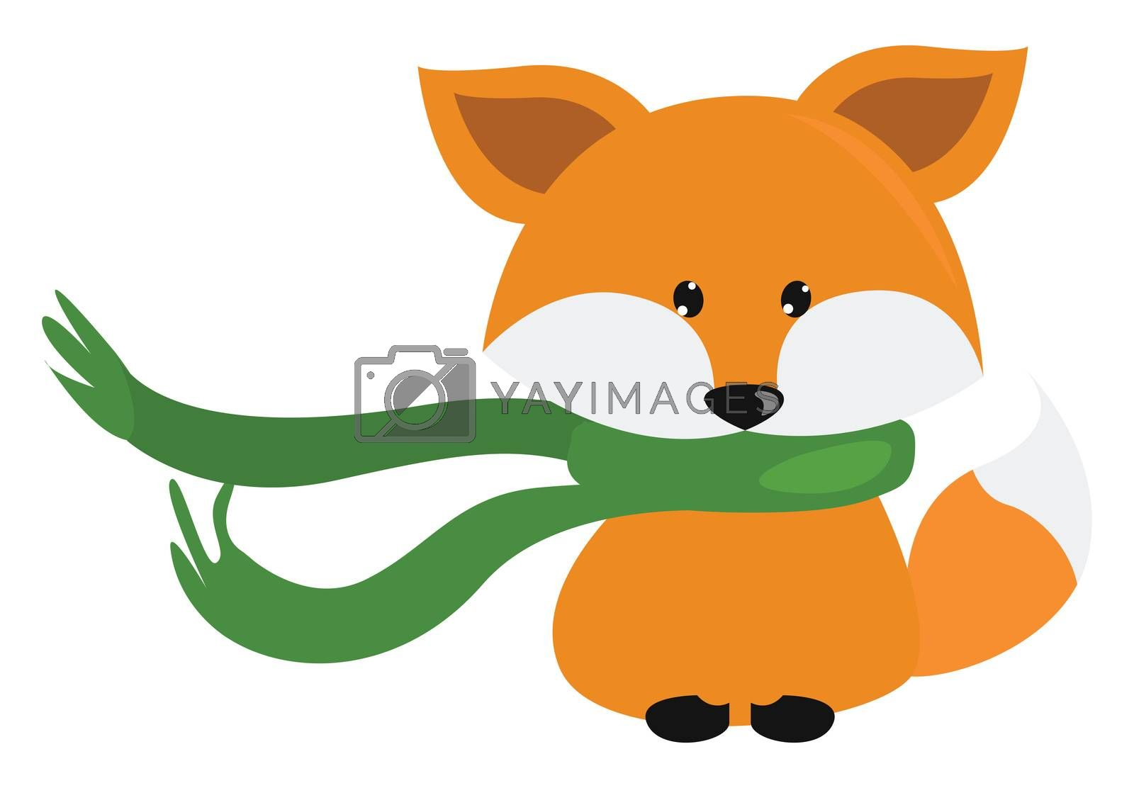 Fox with green scarf , illustration, vector on white background by Morphart