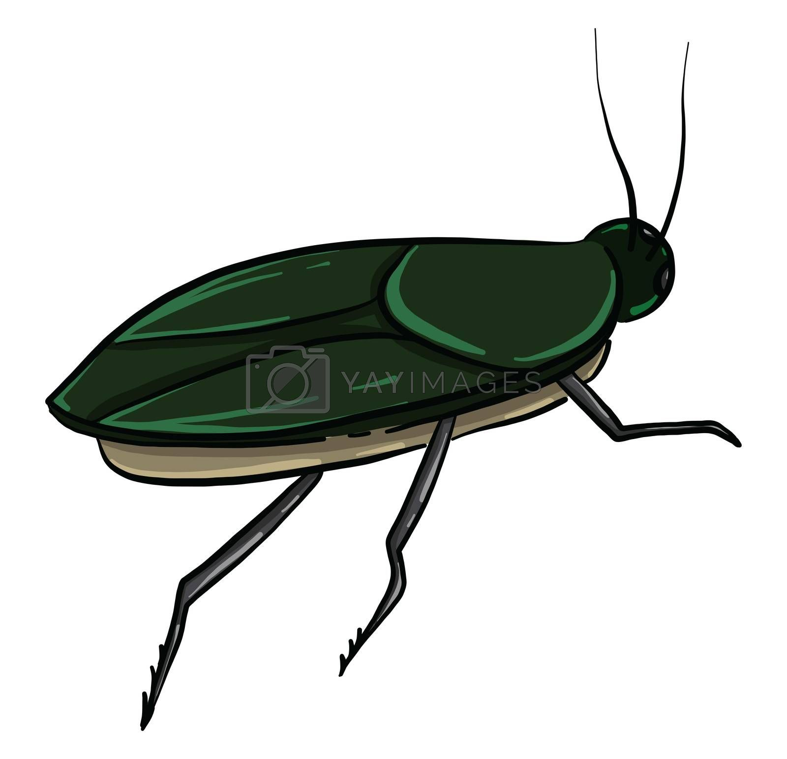 Green cockroach , illustration, vector on white background