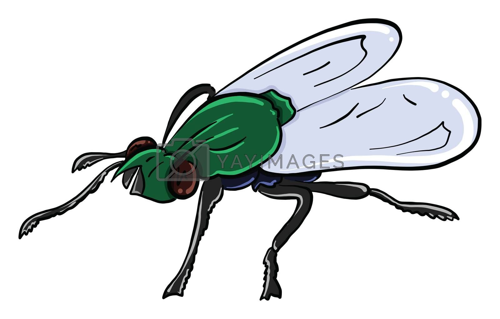 Green fly , illustration, vector on white background by Morphart