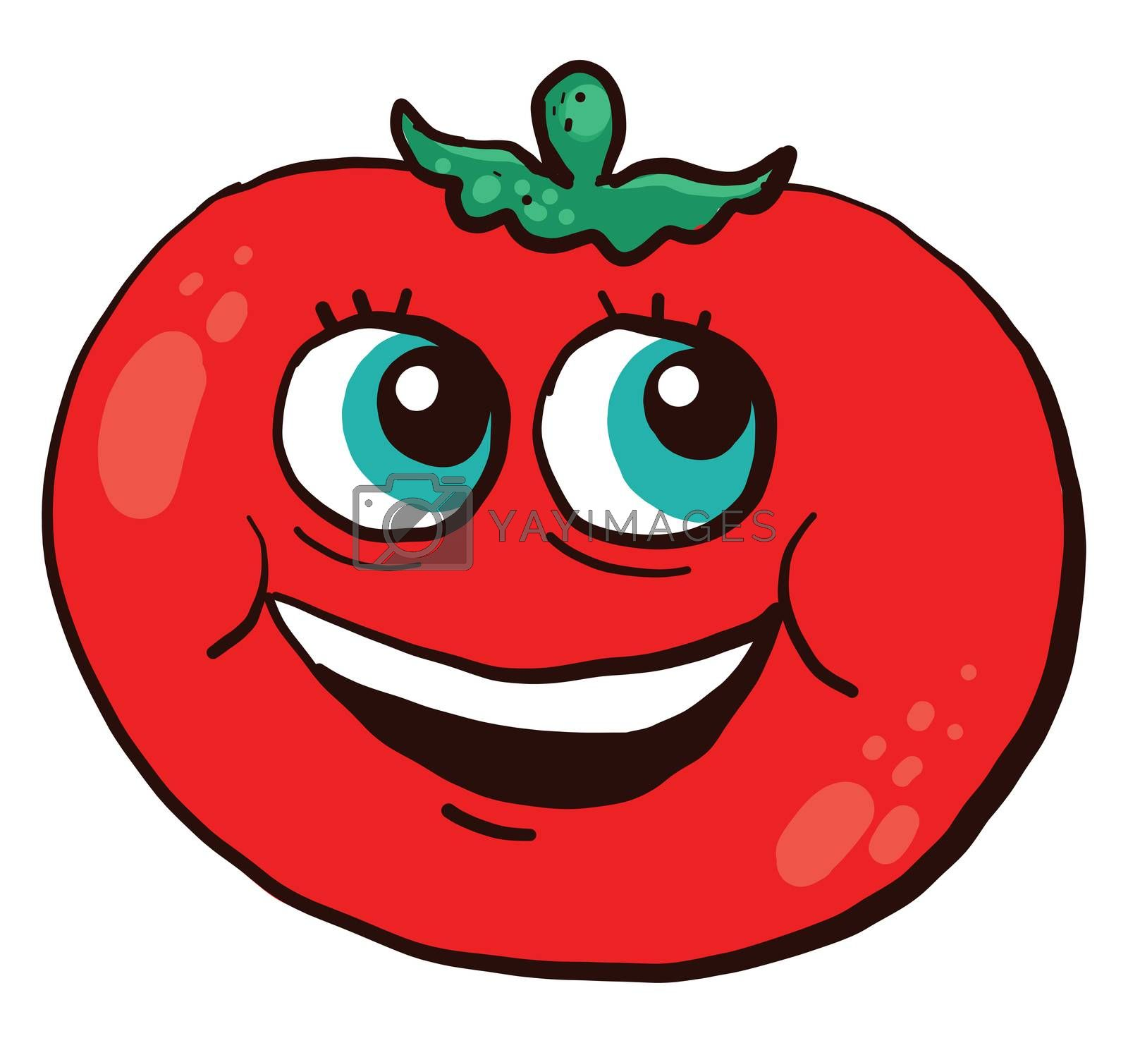 Happy red tomato , illustration, vector on white background
