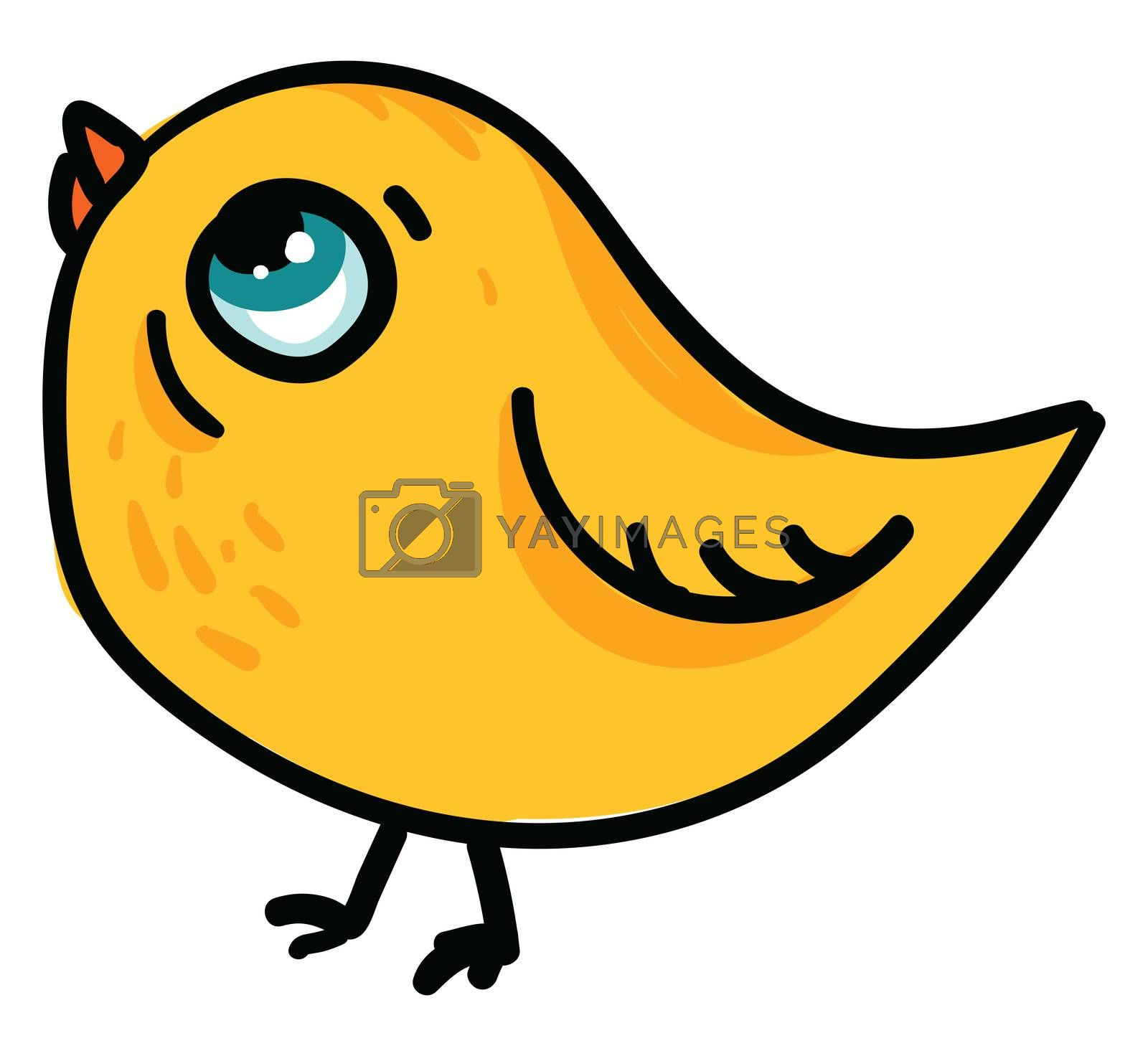 Small chick , illustration, vector on white background