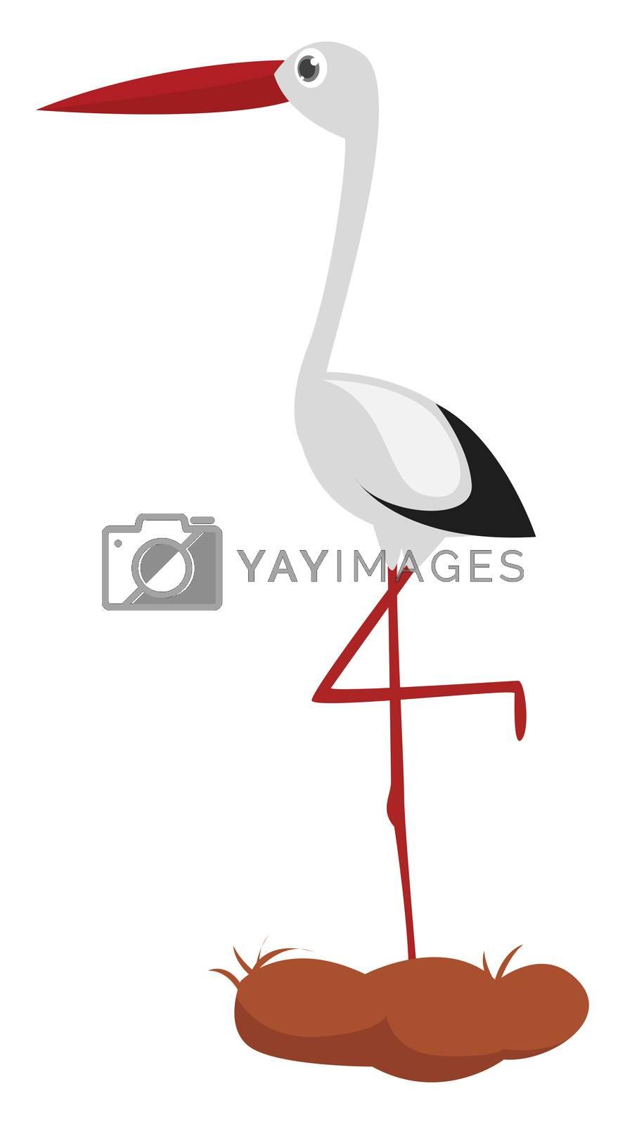 Stork standing on one leg , illustration, vector on white background