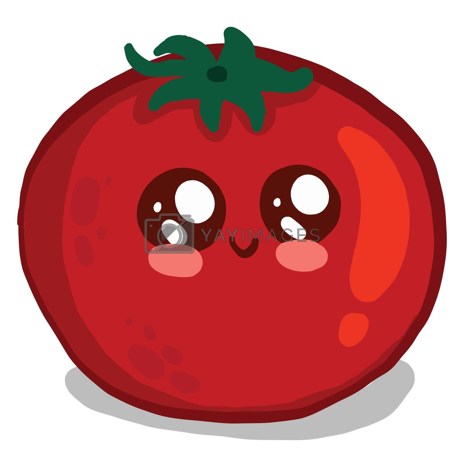 Cute red tomato , illustration, vector on white background