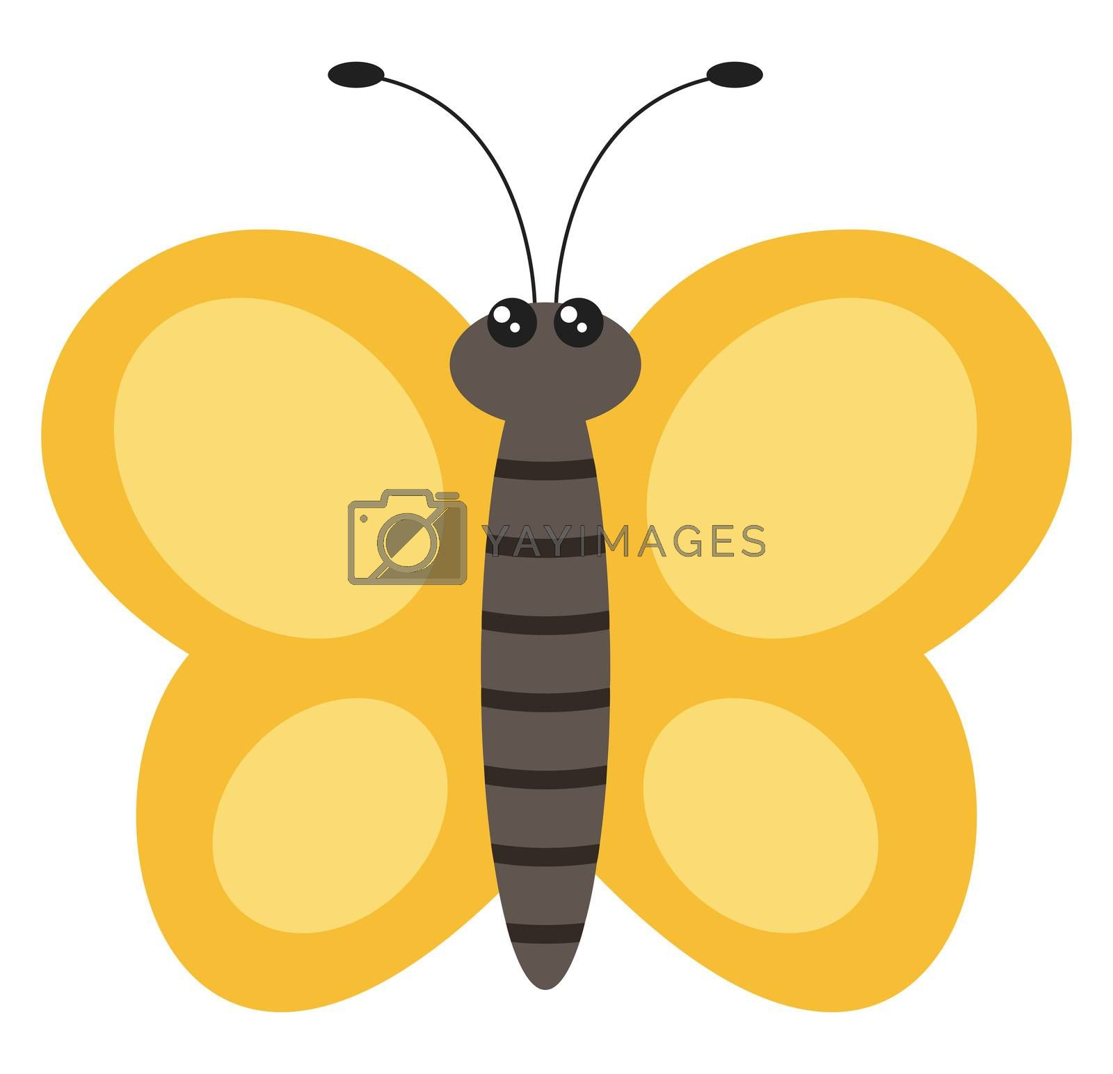 Yellow butterfly, illustration, vector on white background by Morphart