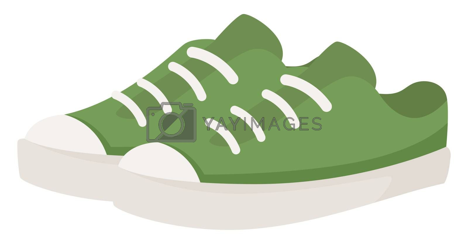 Green summer sneakers, illustration, vector on white background