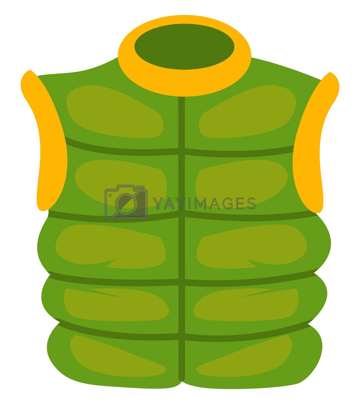 Green man vest, illustration, vector on white background
