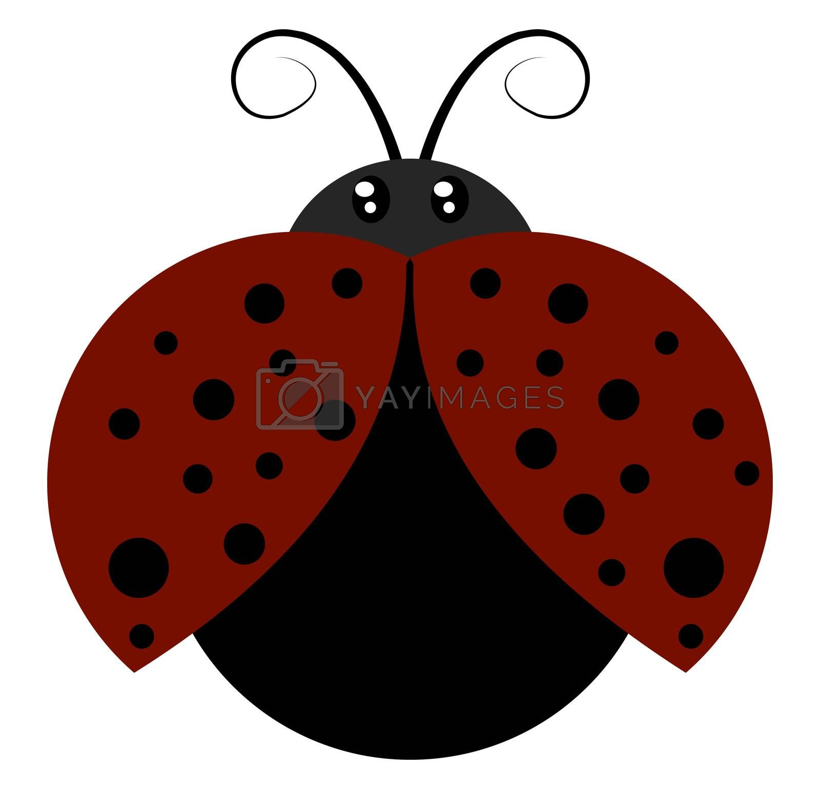 Flying ladybug, illustration, vector on white background