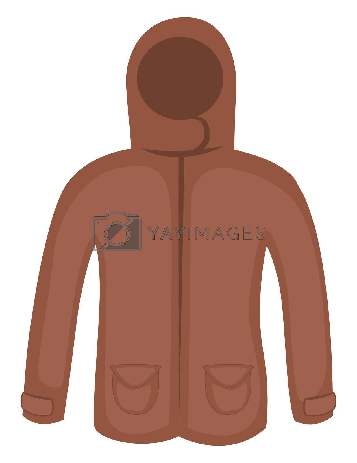 Brown winter jacket, illustration, vector on white background