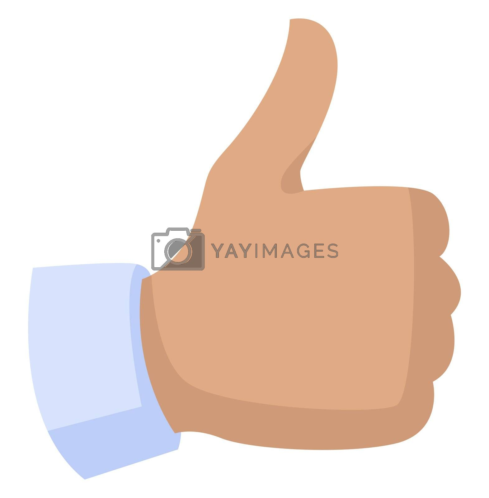 Royalty free image of Thumbs up, illustration, vector on white background by Morphart
