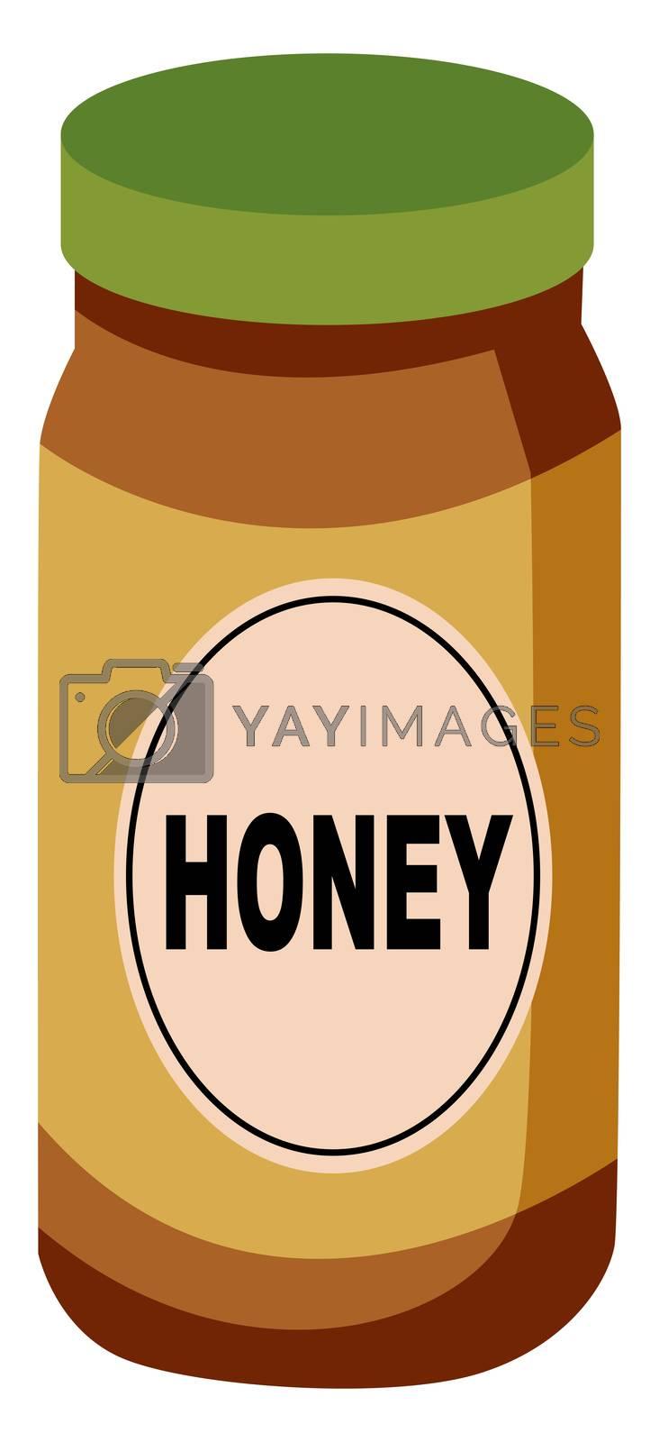 Honey in jar, illustration, vector on white background