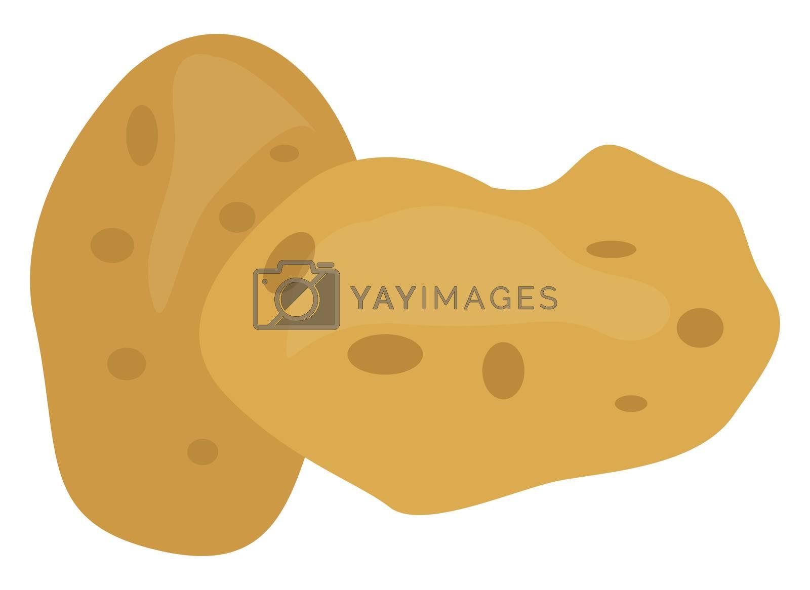Potato, illustration, vector on white background