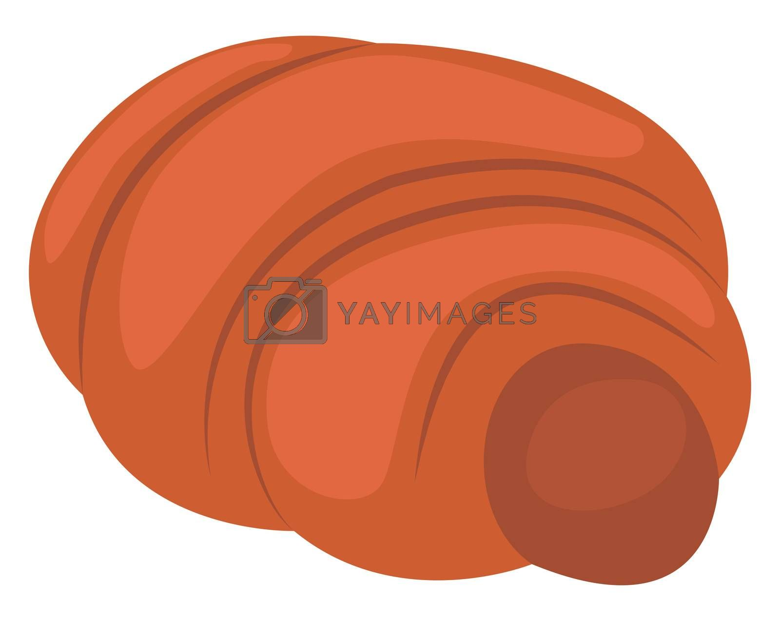 Sweet potato, illustration, vector on white background