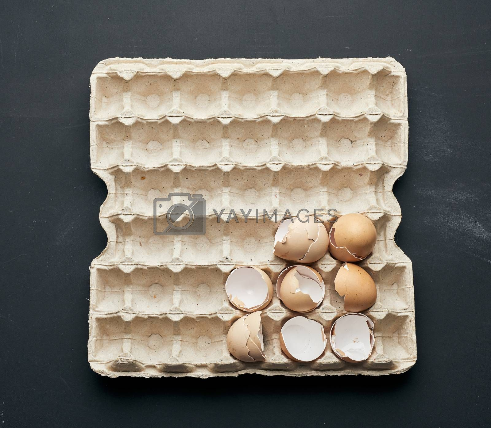 eggshell in a paper tray on a black wooden table by ndanko