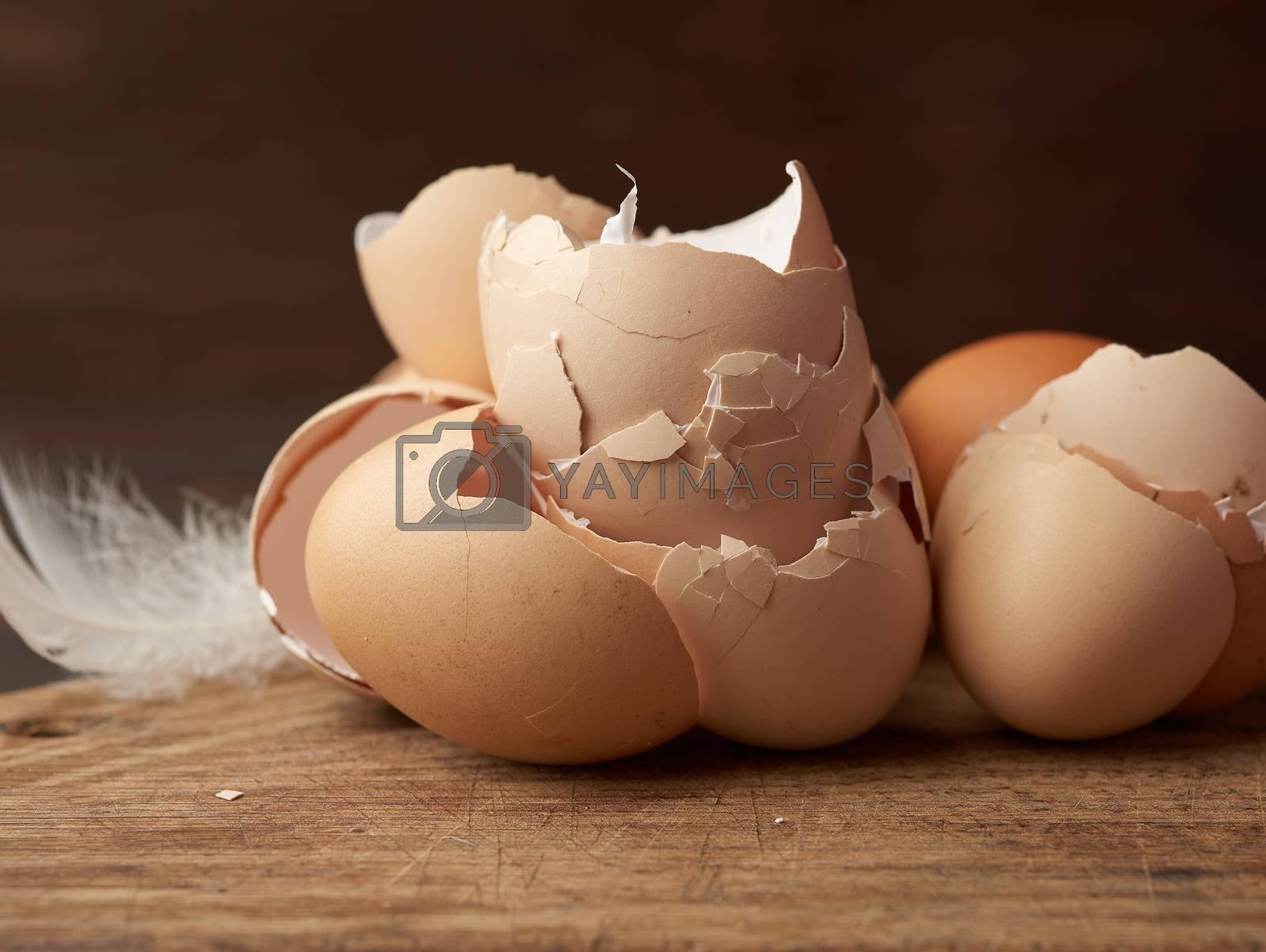 chicken eggs shells on a cutting board by ndanko