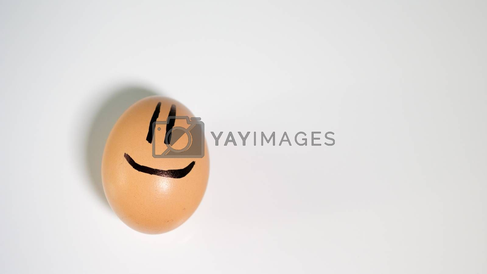 whole chicken egg smiling white background