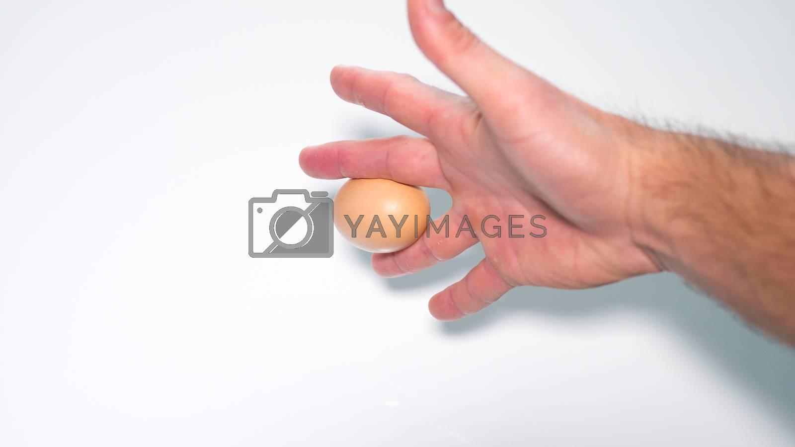 chicken egg between fingers in male hand