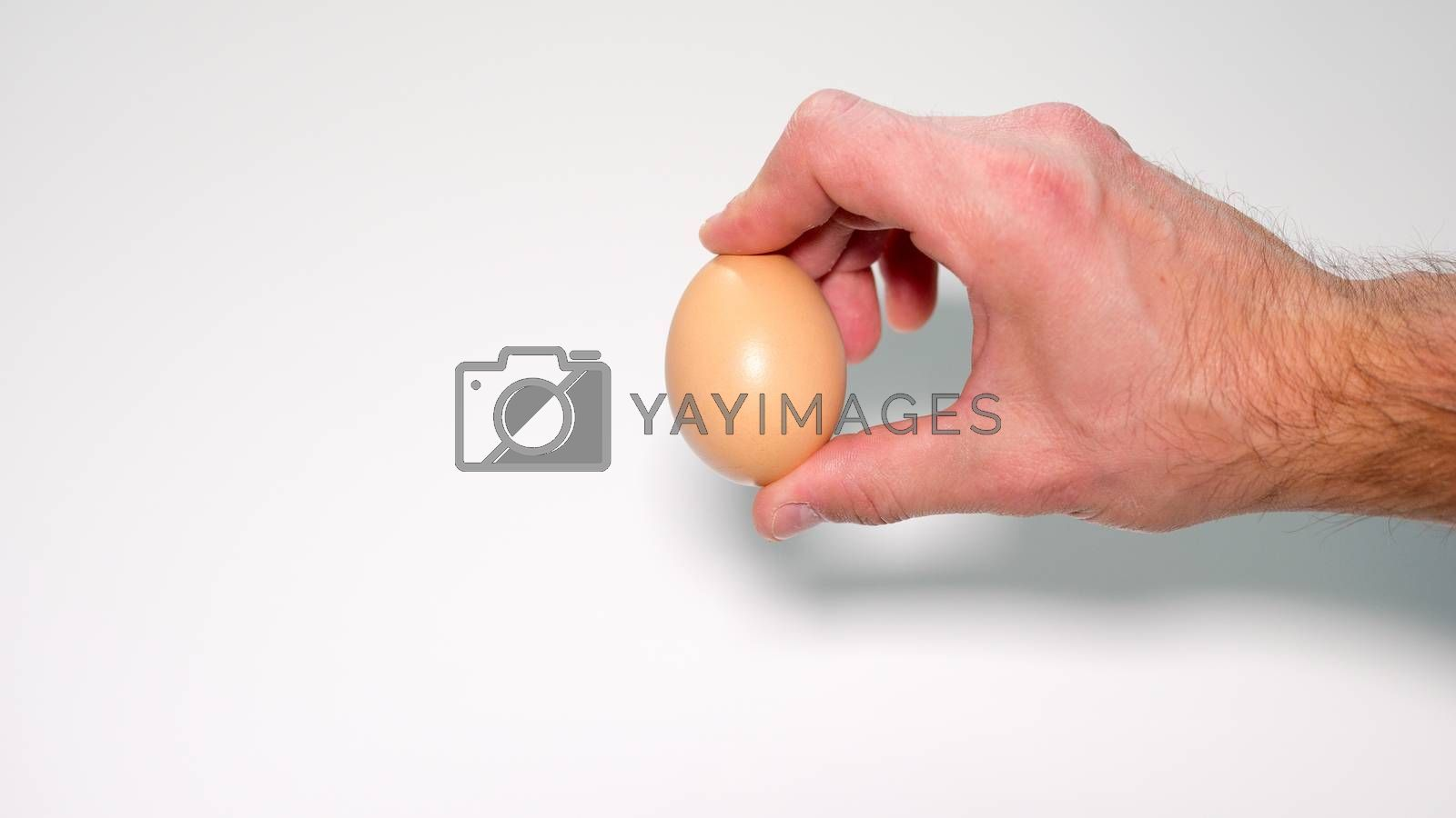 hold the egg with fingers male hand