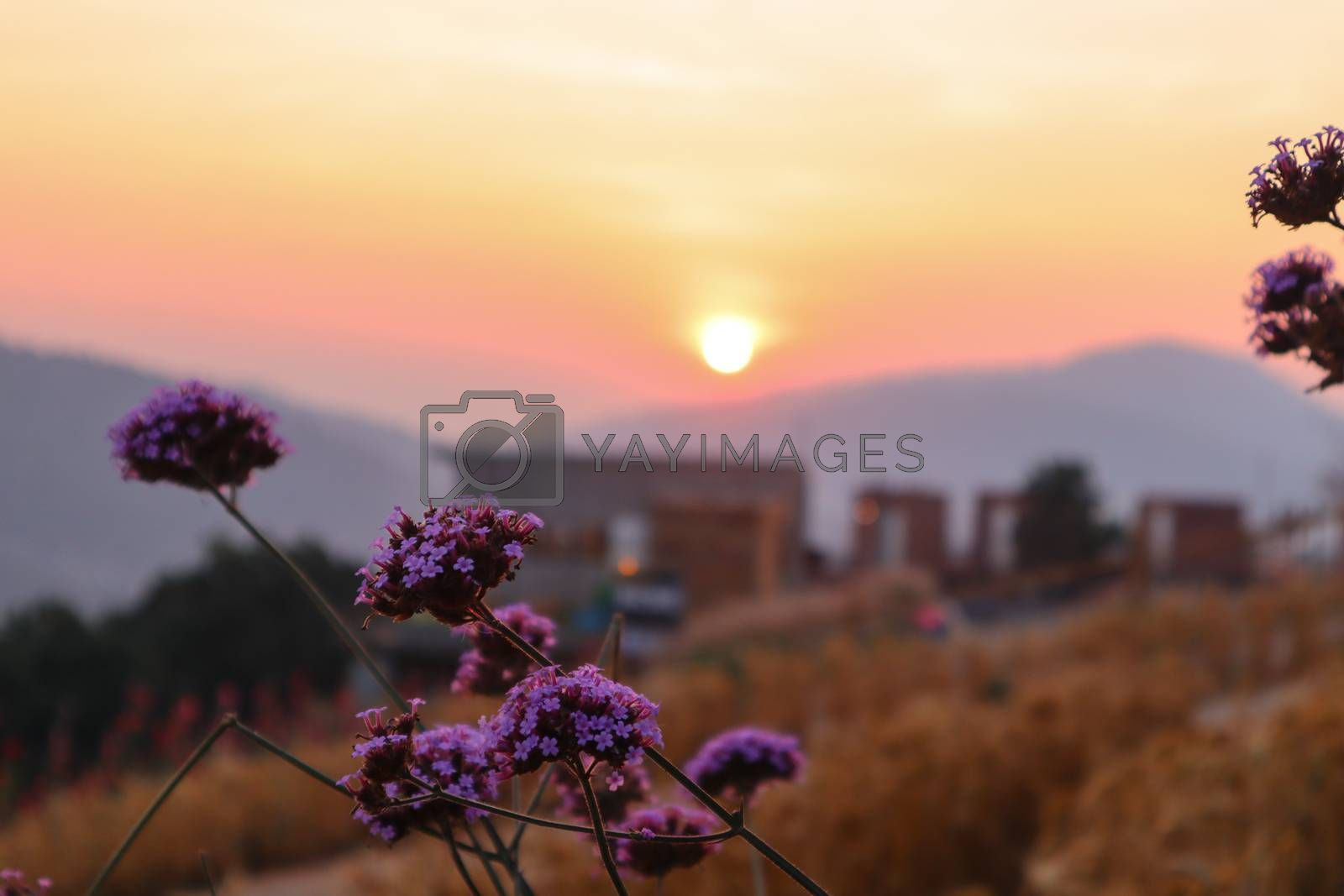 The mountain sunset in a thai village near mountains in Chiang Mai, Thailand. The mountain scenery view