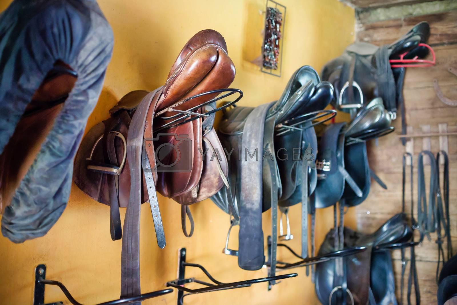 Photo of horse saddle